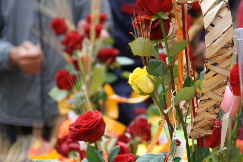 Diada-de-Sant-Jordi-roses-i-llibres